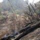 Titik Api Muncul Lagi di Semeru, Wakapolda Naik Helikopter Pastikan Lokasi