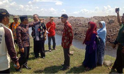 'Ngawur' Timbun Lahan Konservasi, Bupati Tak Keluarkan Izin Tambak Udang PT LUIS