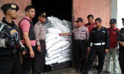 Cobra Sikat 'Tikus Gula' PG Djatiroto Lumajang